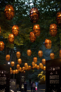 2-foresta-lumina-light-installation-by-moment-factory